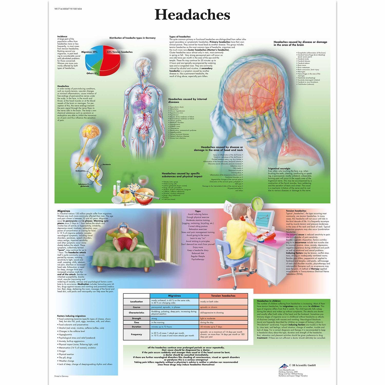 Wandplaat geplastificeerd Headaches - 50 x 67 cm