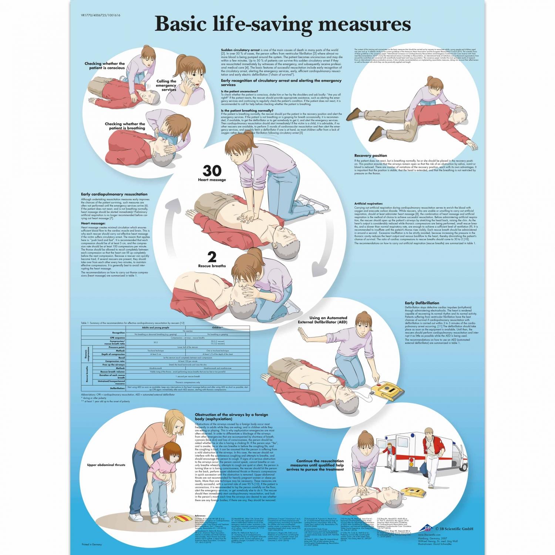 Wandplaat geplastificeerd Basic Life-Saving Measures - 50 x 67 cm